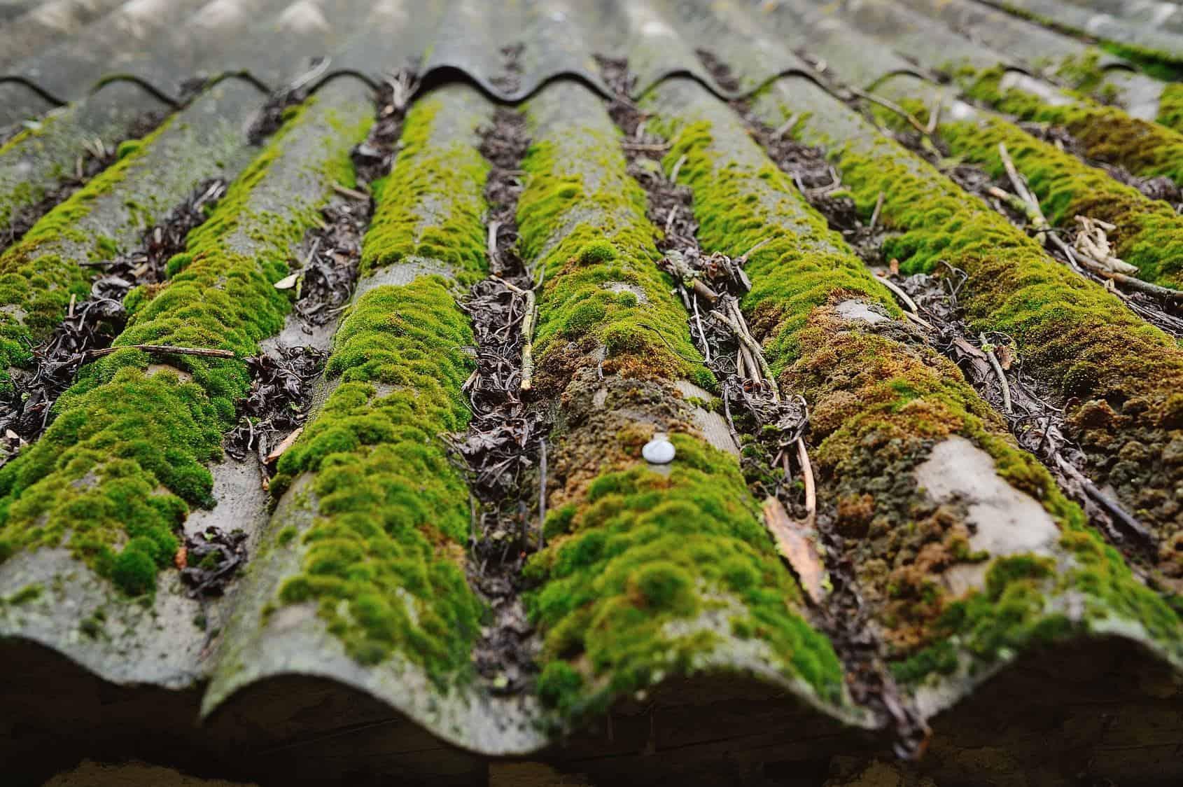 nettoyage de toiture avec de la mousse