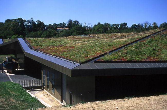 Isoler toiture végétalisée