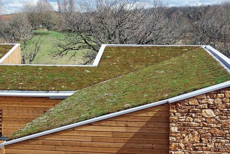 exemple de toit végétale
