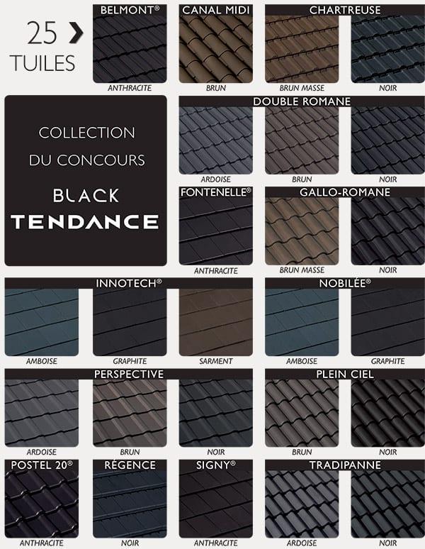 différents types de tuiles noires